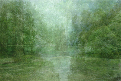 Kim_Boske_I_go_walking_in_your_landscape